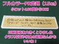 フルカラー印刷 15cm定規